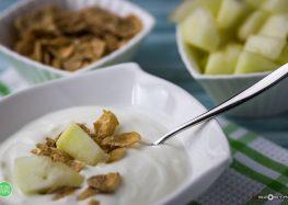 jogurt z płatkami żytnimi i melonem